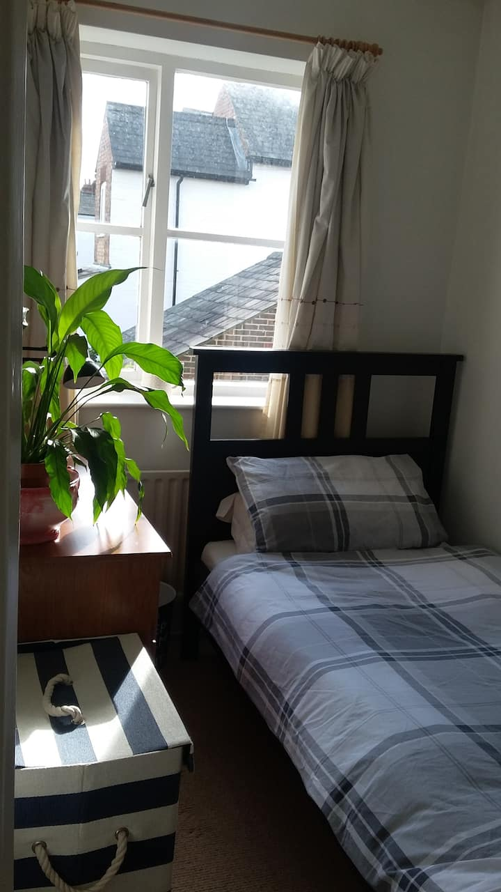 Sunny single room in centre of historic St Albans