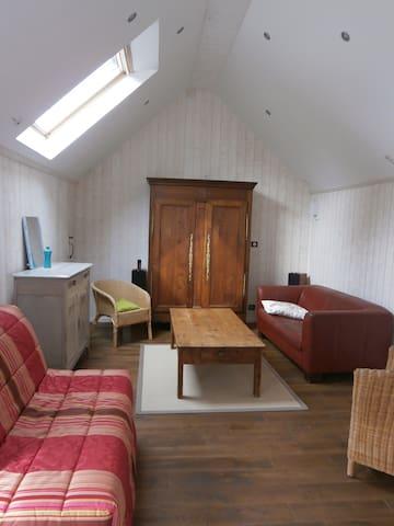 grande chambre-salon proche gare lannion - Lannion