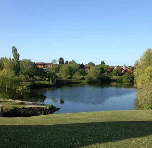 Place with a lake view - Brierley Hill