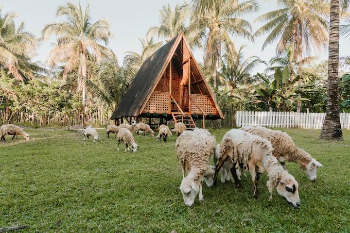 Magical Hut in a Farmstay