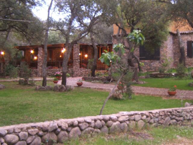 Le Sughere - Agriturismo B&B - Padru - Bed & Breakfast