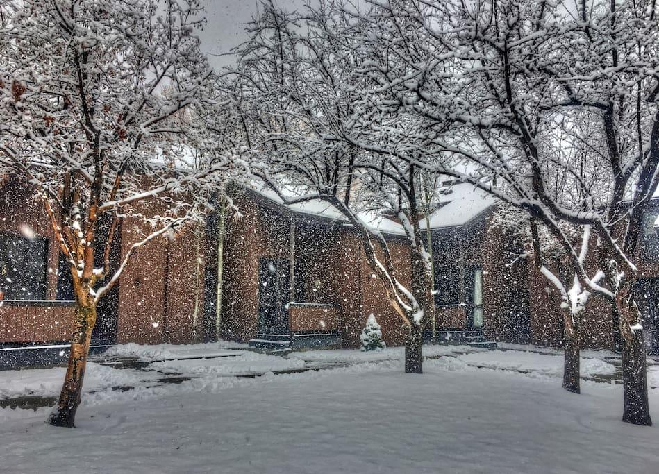 Exterior Front - Snow Storm!