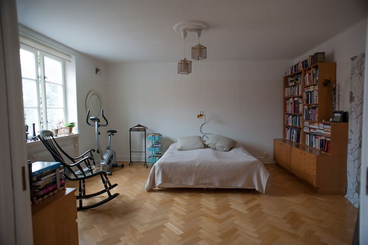 Spacious apartment in central Lund - Lund - Huoneisto