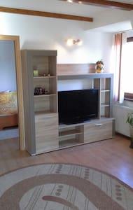 Cozy apartment - 錫比烏 - 公寓
