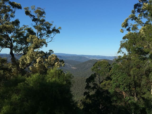 Mount Tamborine Views and Forests - Clagiraba - Pis