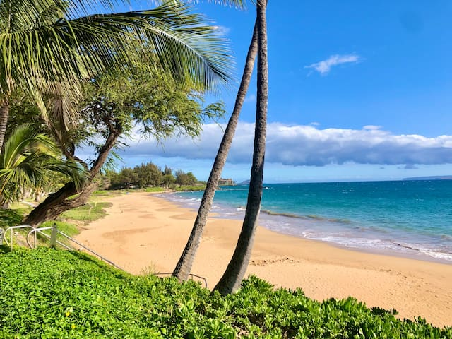 OCEANFRONT*OCEAN VIEW* Oasis by popular beaches