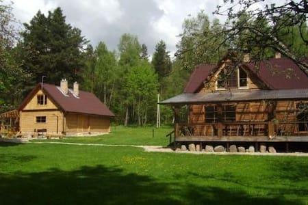 Homestead near the Lake Sventas - Zarasai District Municipality - Villa