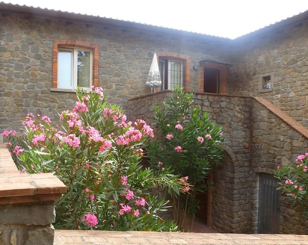 Tuscany among excursions and horses - Canossa - Appartement