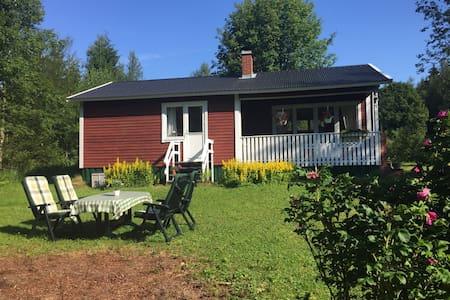 Cottage in Tyngsjö, Dalarna - Tyngsjö