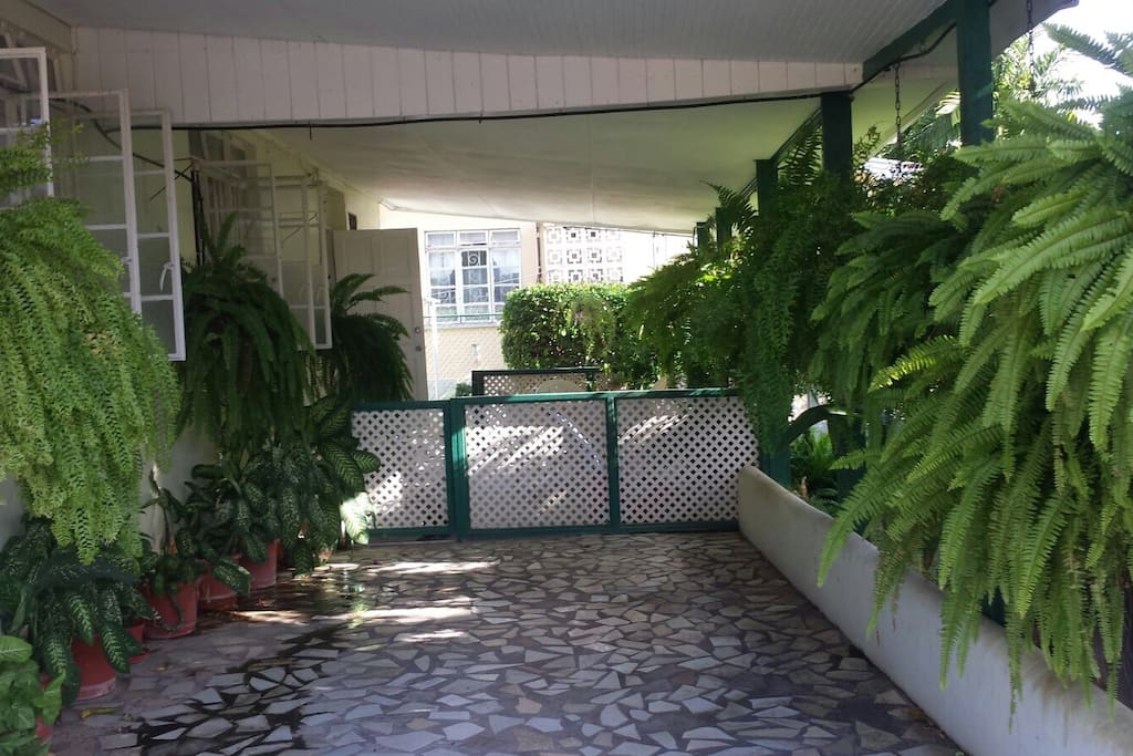 Lovely greenery leading to a shared patio area.