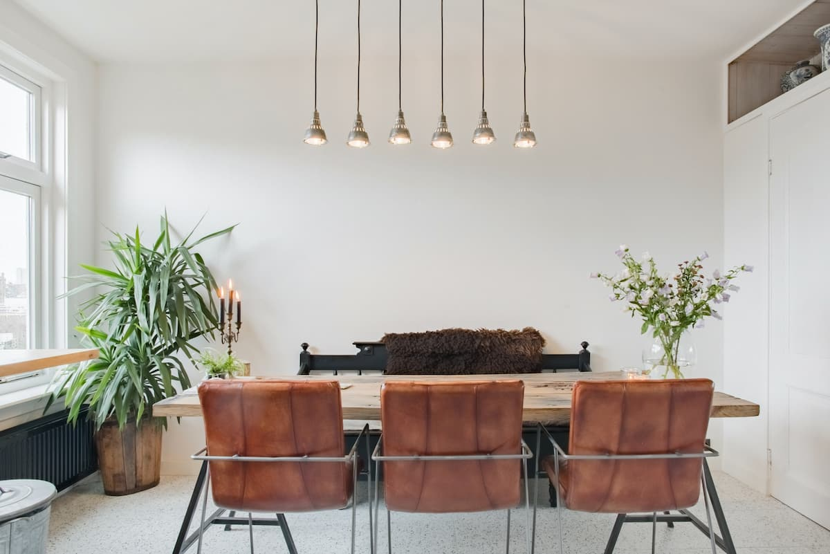 Plant-Filled Home Brimming with Light and Retro Flair