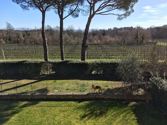 Private rooms in Tuscan countryside - Latereto - Villa