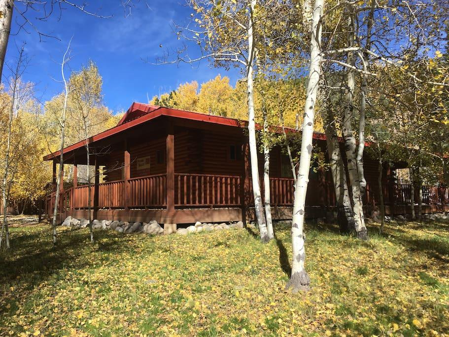 Enjoy the wrap around porch including a gas BBQ grill and patio set