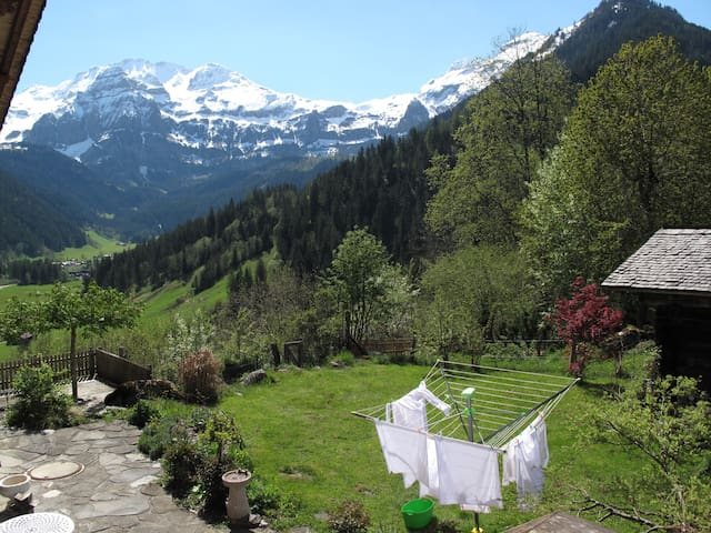 Beautiful studio with splendid view of the Alps - Lenk - Apartmen