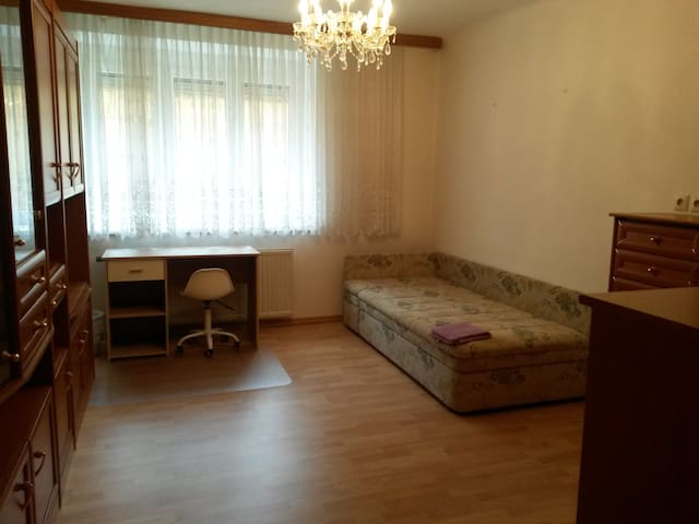 cozy & silent city center apartment - Krems an der Donau - Leilighet