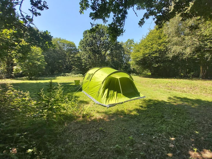 Private Camping in Woodland