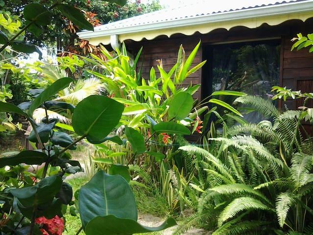 Végétation foisonnante et odeurs de  citronnelle sous votre véranda. .