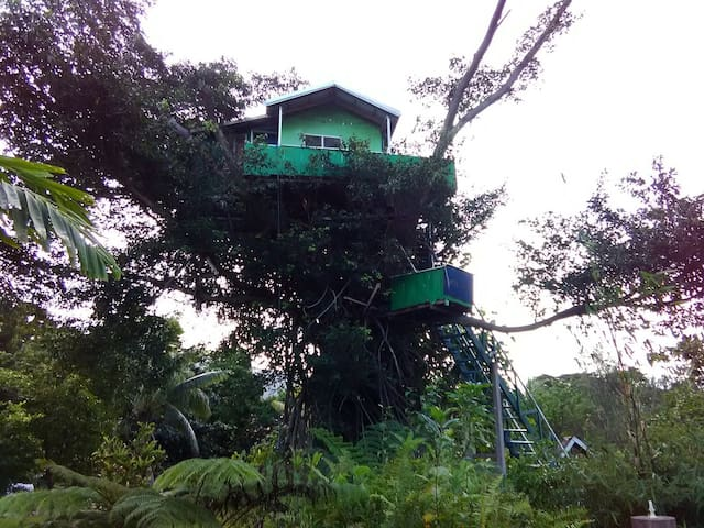 Next to Volcano - Jungle Oasis Bungalows&TreeHouse