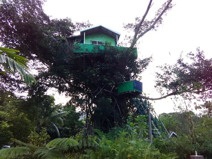 Tree house at Yasur Volcano -Jungle Oasis Bungalow