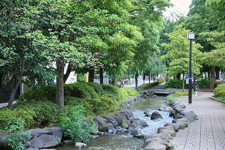 公園近くの一軒家 - Edogawa-ku - House