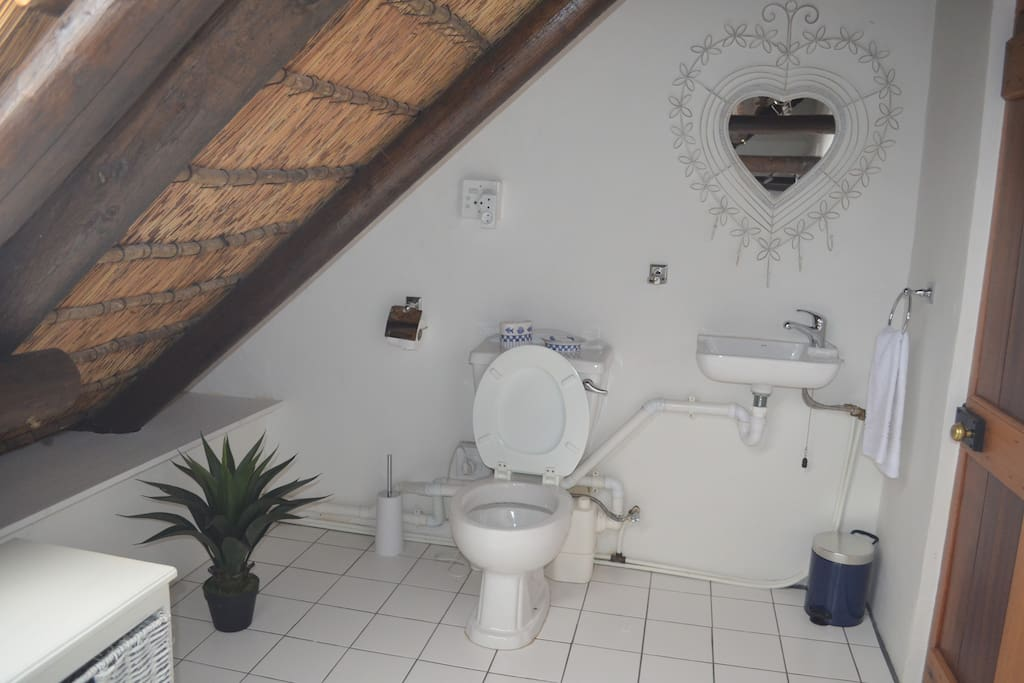 Toilet/bad tilhørende Garden Room.