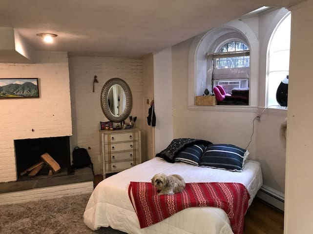 Cozy Studio in GREAT location (Downtown)