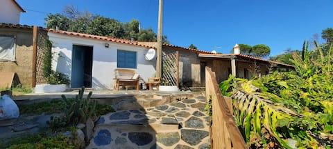 Monchique typical House