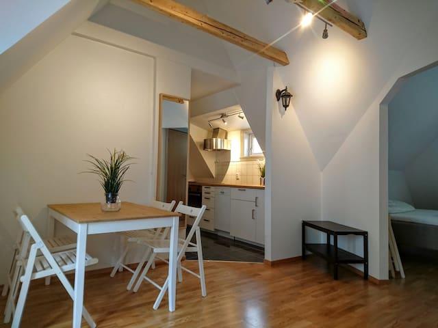 M&P Studio-Aparment near the theather - เบอร์เกน - อพาร์ทเมนท์