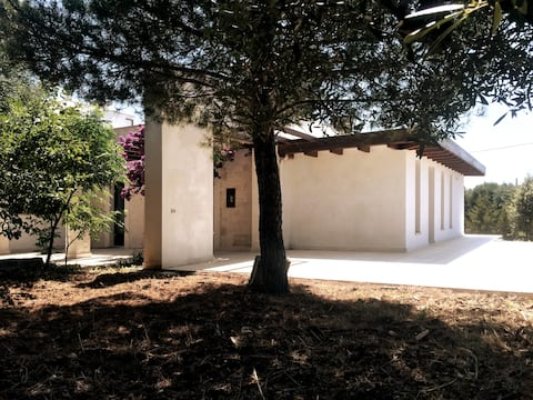 The straw house among the olive trees