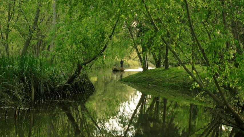 Disfrutá el río y la cercanía a la ciudad...