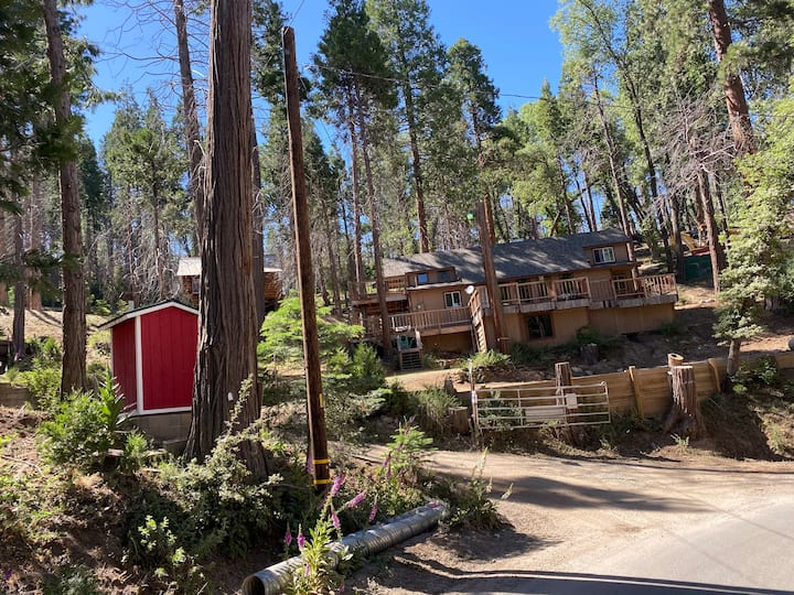 Sequoia National Forrest CabinH