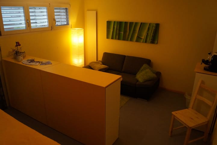 Studio with private bathroom - Dornach - Ev