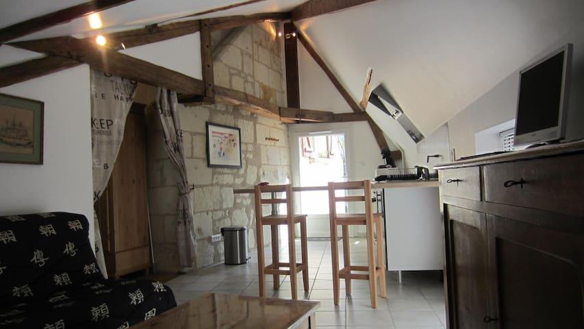 Appartement au coeur de la vallée des Rois - Varennes-sur-Loire - Apartamento