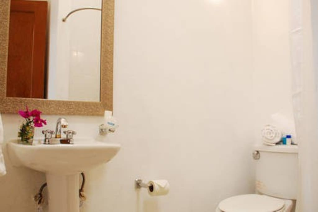 PRIVATE BATHROOM ORCHID BEDROOM- Full bathroom with shower provided with clean towels, soap , shampo and cream