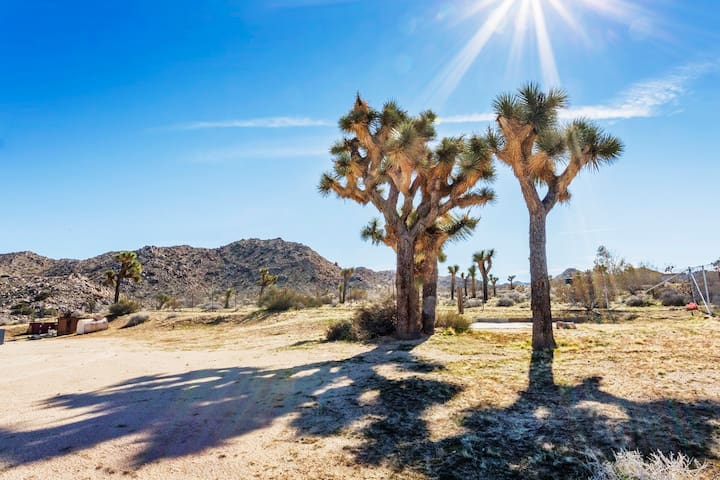 The yard is full of Joshua Trees and leads to private trails that connect to the back entrance of Joshua Tree National Park.