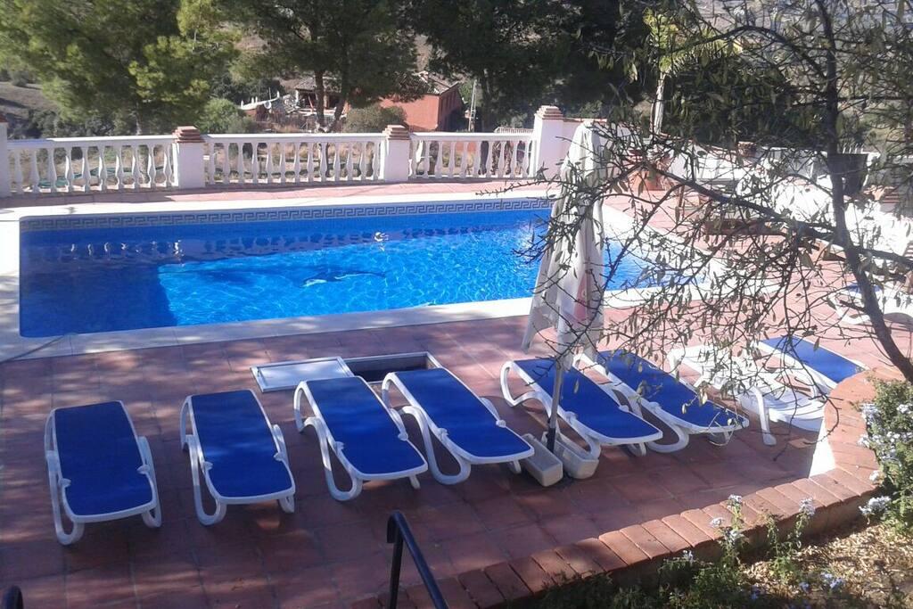 10 m x 5m pool
