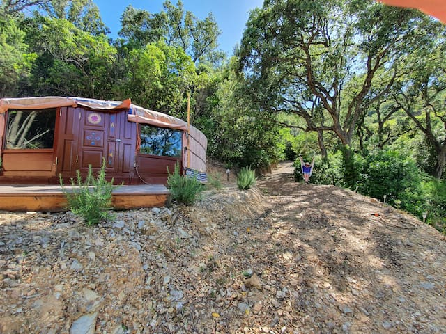 Eco-friendly Yurt glamping with panoramic views