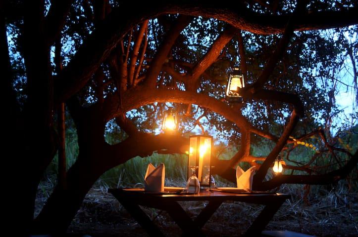 Sigiriya Lodge - Sigiriya - Villa