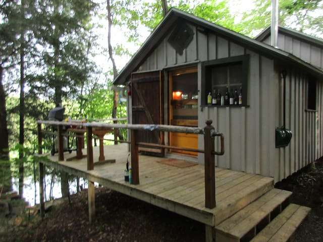Charming Rustic Cabin in Cherry Creek, New York!