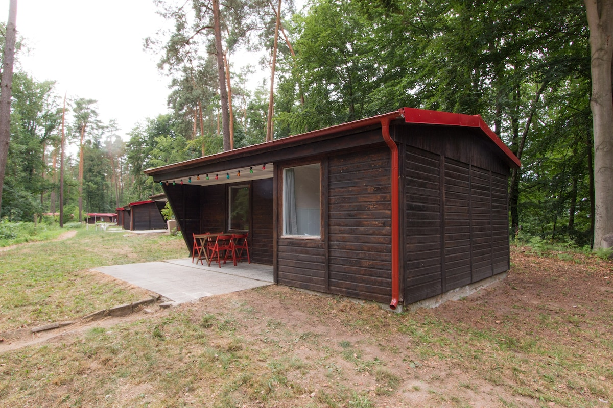 Chorin 2018 (with Photos): Top 20 Places To Stay In Chorin   Vacation  Rentals, Vacation Homes   Airbnb Chorin, Brandenburg, Germany