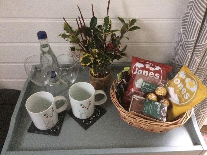 Anglesey Yurt Holidays - Shepherd's Hut1
