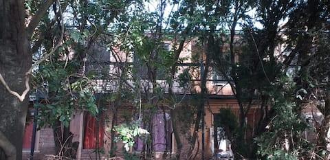 Cabin 5 Victoria IX region