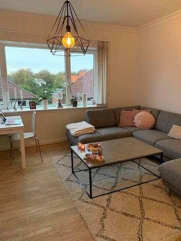 Cosy Apartment in Esbjerg Cetrum