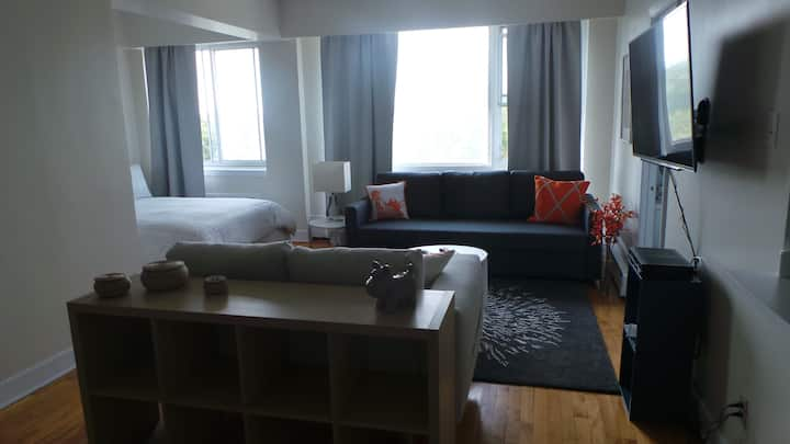 Room with a view  (apt 119) Free limited parking
