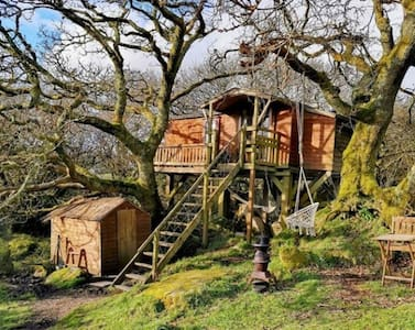 TREE HOUSE in ancient oak trees at Gin Distillery