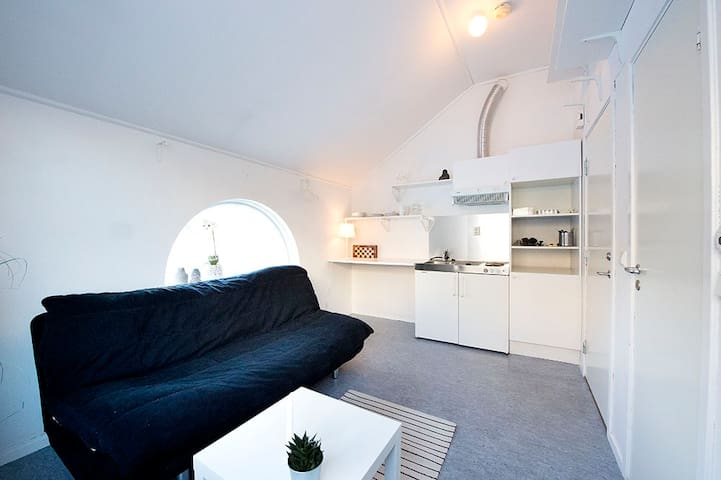 Cozy loft Studio apartment