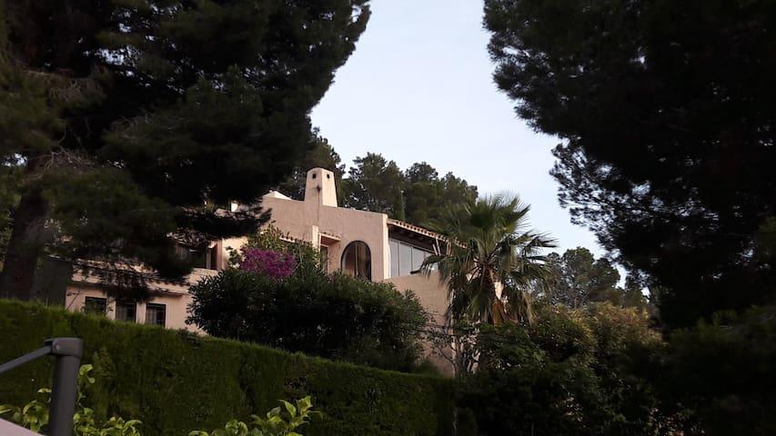ALTEA very nice  style house