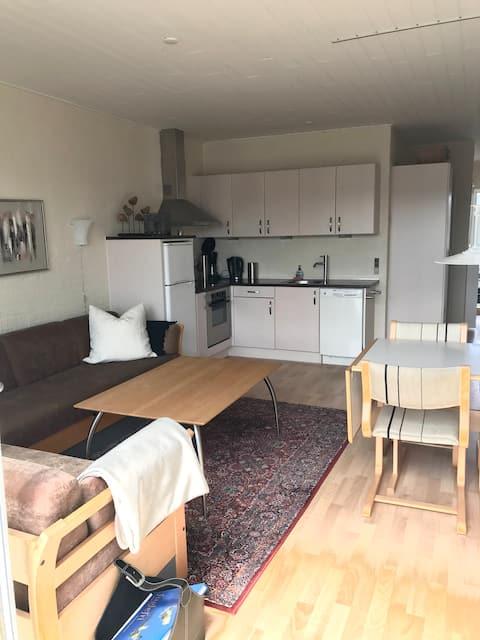 Härlig lägenhet - bara 100 meter från stranden