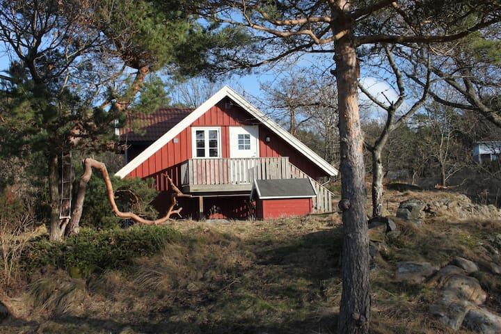 Sjønær solrik leilighet - Kongshavn - Wohnung