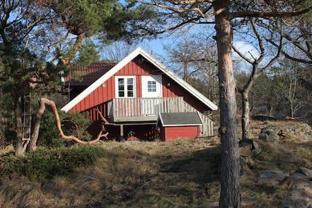Sjønær solrik leilighet - Kongshavn